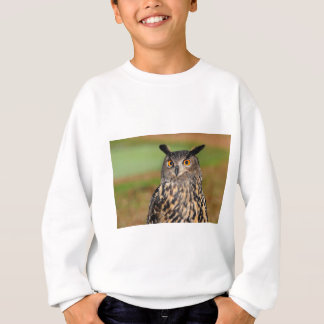European Eagle Owl Sweatshirt