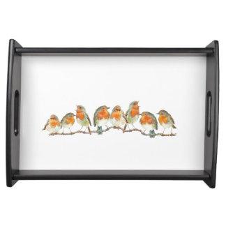 European red robin bird design. serving tray