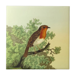 European Robin Tile