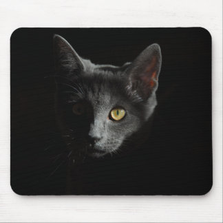 European Shorthair | Black Cat | Cat Portrait Mouse Pad