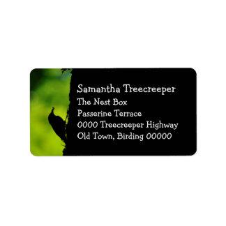 European treecreeper