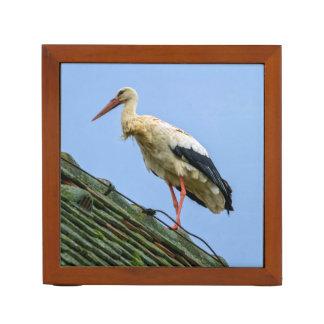 European white stork, ciconia desk organizer