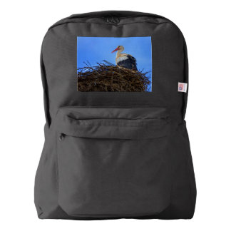European white stork, ciconia, in the nest backpack