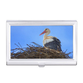 European white stork, ciconia, in the nest business card holder