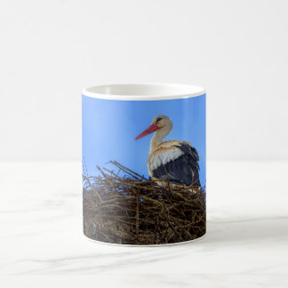 European white stork, ciconia, in the nest coffee mug