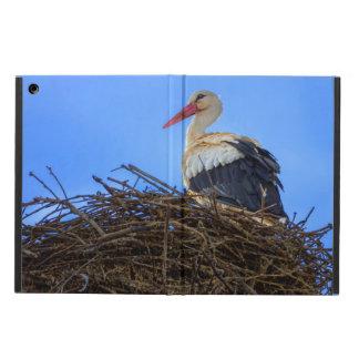 European white stork, ciconia, in the nest iPad air case