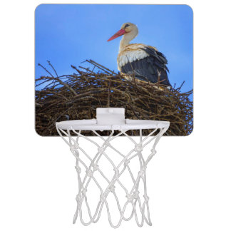 European white stork, ciconia, in the nest mini basketball hoop