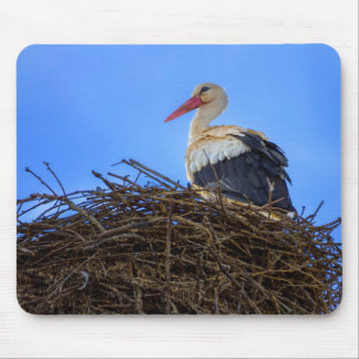 European white stork, ciconia, in the nest mouse pad