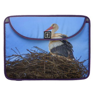 European white stork, ciconia, in the nest sleeve for MacBooks