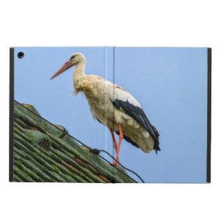 European white stork, ciconia iPad air cover