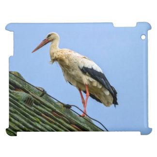 European white stork, ciconia iPad cases
