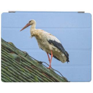 European white stork, ciconia iPad cover