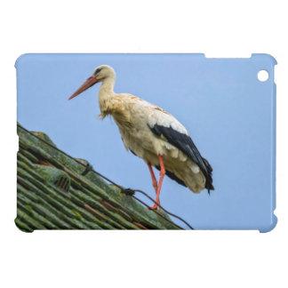 European white stork, ciconia iPad mini cover