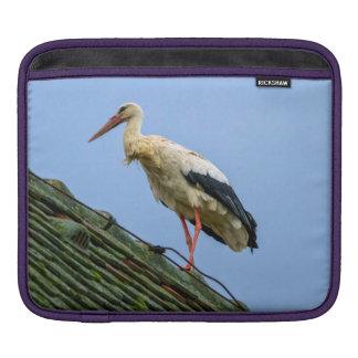 European white stork, ciconia iPad sleeve