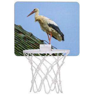 European white stork, ciconia mini basketball backboard