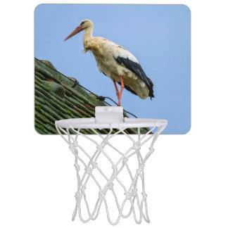 European white stork, ciconia mini basketball hoop
