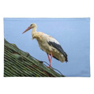 European white stork, ciconia placemat