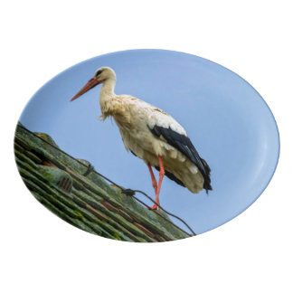 European white stork, ciconia porcelain serving platter