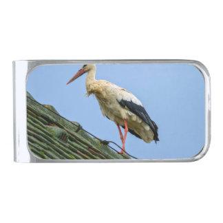 European white stork, ciconia silver finish money clip