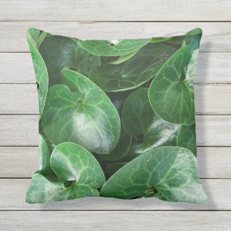 European Wild Ginger Plant Glossy Leaves Close Up Throw Pillow