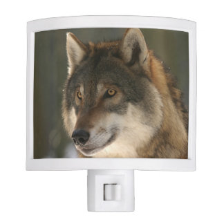 European Wolf Night Lights