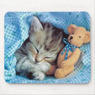 Even Kittens Love Teddybears Mouse Pad
