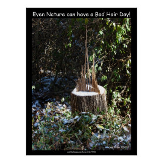 """Even Nature Can Have A Bad Hair Day!"" Print"