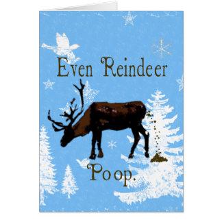 Even Reindeer Poop Funny Christmas Greeting Card
