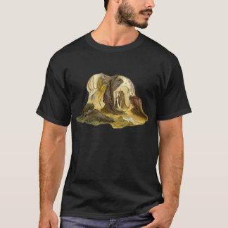Evening Ashura T-Shirt