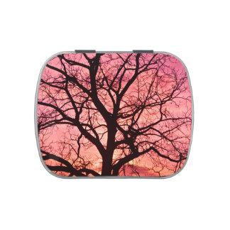 Evening Blush Tree Silhouette