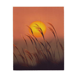 Evening By The Sun |  Wood Wall Art Wood Print