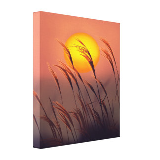 Evening By The Sun |  Wrapped Canvas