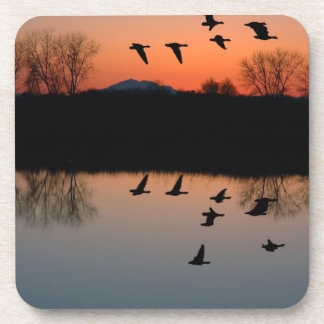 Evening Geese Beverage Coaster