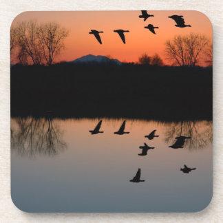 Evening Geese Coaster