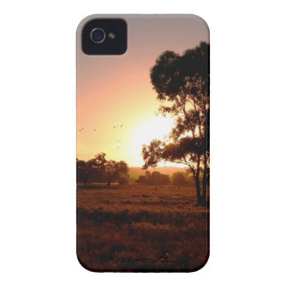 Evening Gold iPhone 4 Case-Mate Cases