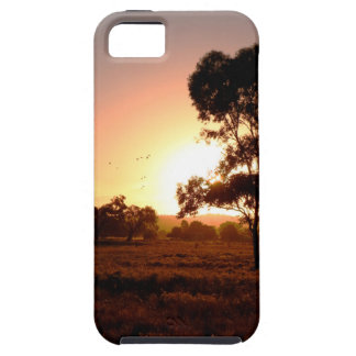 Evening Gold iPhone 5 Cases