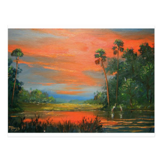 Everglades Fire Sky Postcard
