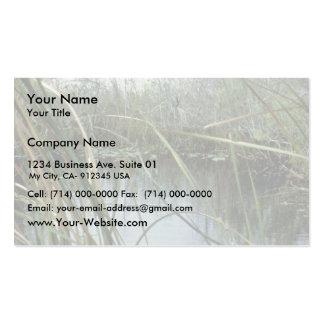 Everglades National Park Business Cards