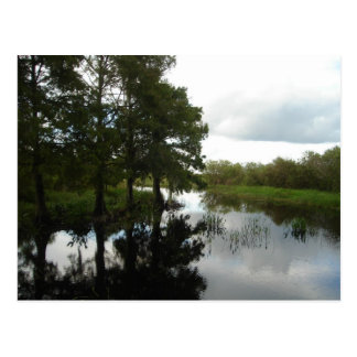 Everglades Waterway Postcard