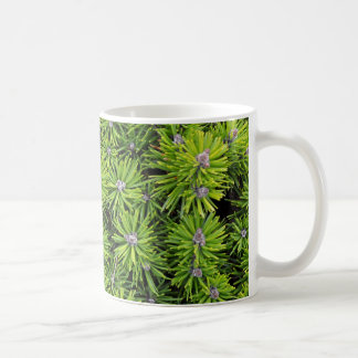 Evergreen branches coffee mug