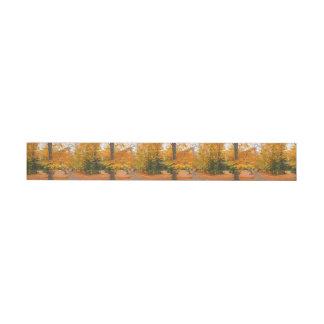 Evergreen Pines and Autumn Trees Wraparound Address Label