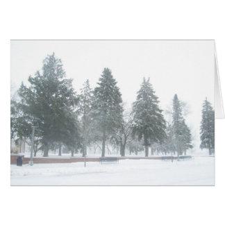 Evergreen Scene Care Card