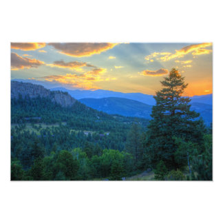 Evergreen Sunset Photo Art
