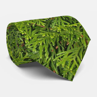 Evergreen Tree Branches Tie