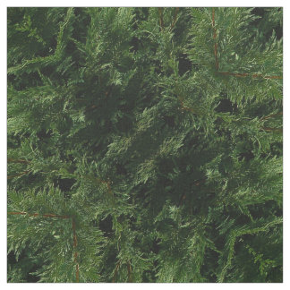 Evergreen Tree - Cypress Boughs Fabric