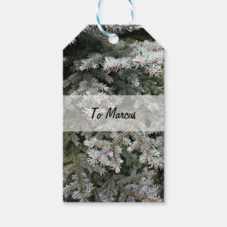 Evergreen tree | pack of gift tags