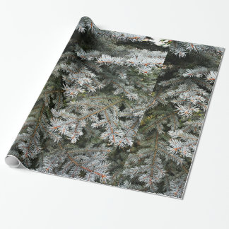 Evergreen tree | wrapping paper