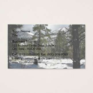 Evergreen trees in a snowy landscape business card