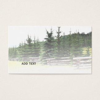 evergreen trees in Colorado mountains Business Card