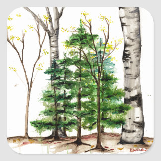 evergreen trees sticker